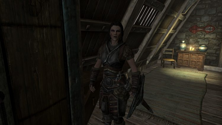 Housecarls, one of the best followers in Skyrim