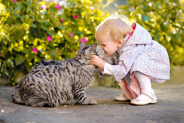 A cat giving a baby a kiss