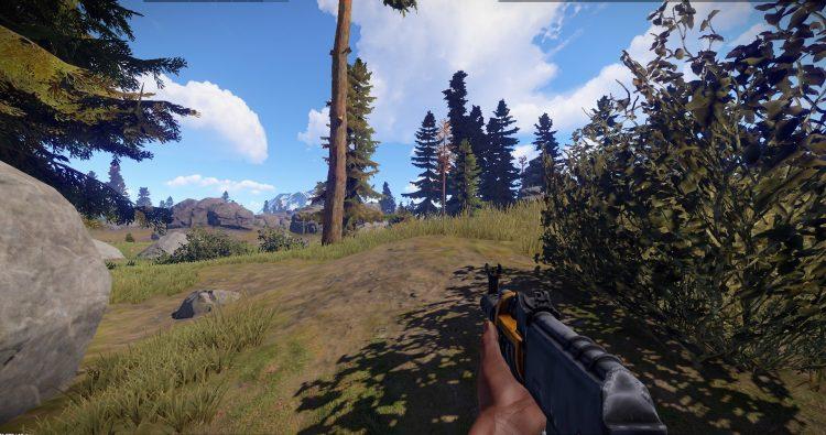 AK is by far the best gun in Rust!