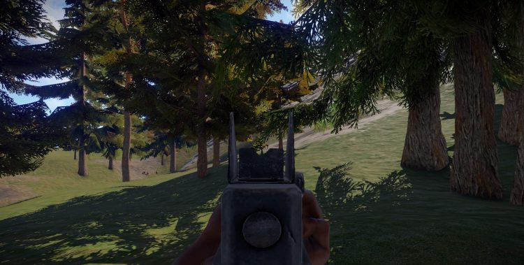 Thompson, one of the best guns in Rust