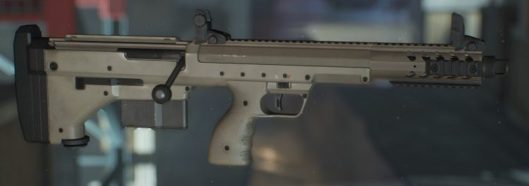 SRS, one of the best marksman rifles in The Divison