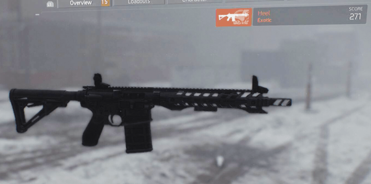 Heel, one of the best marksman rifles in The Divison