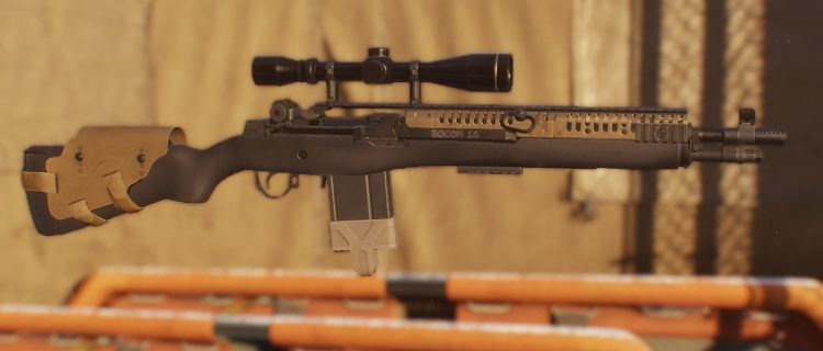 M1A, one of the best marksman rifles in The Divison