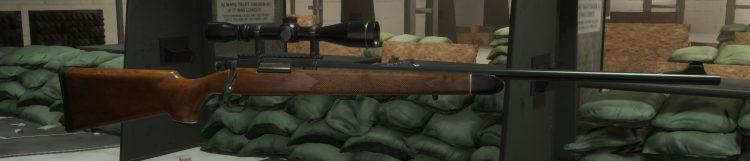 M700, one of the best marksman rifles in The Divison