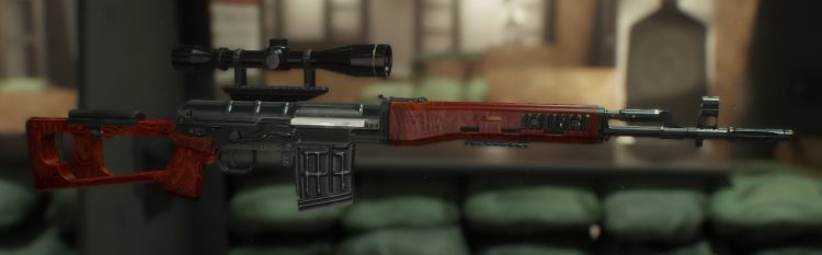 SVD, one of the best marksman rifles in The Divison