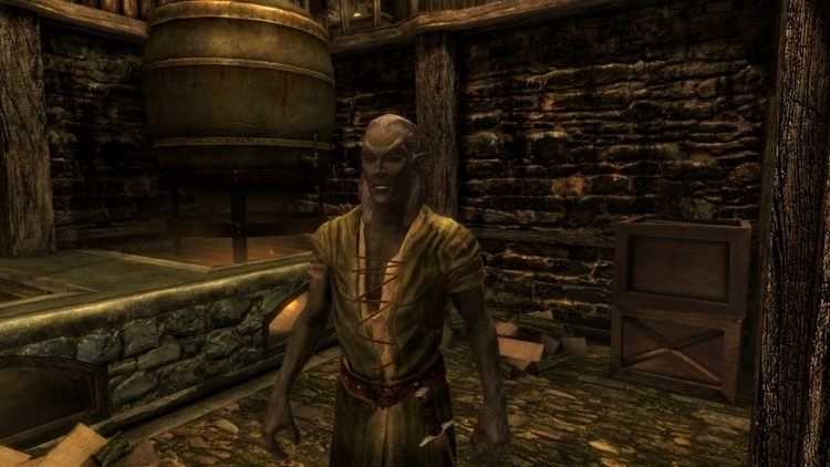 Top 10 Best Husbands in Skyrim - QTopTens