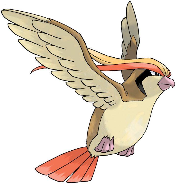 Pidgeot, one of the best Flying type Pokemon in Pokemon Let's Go