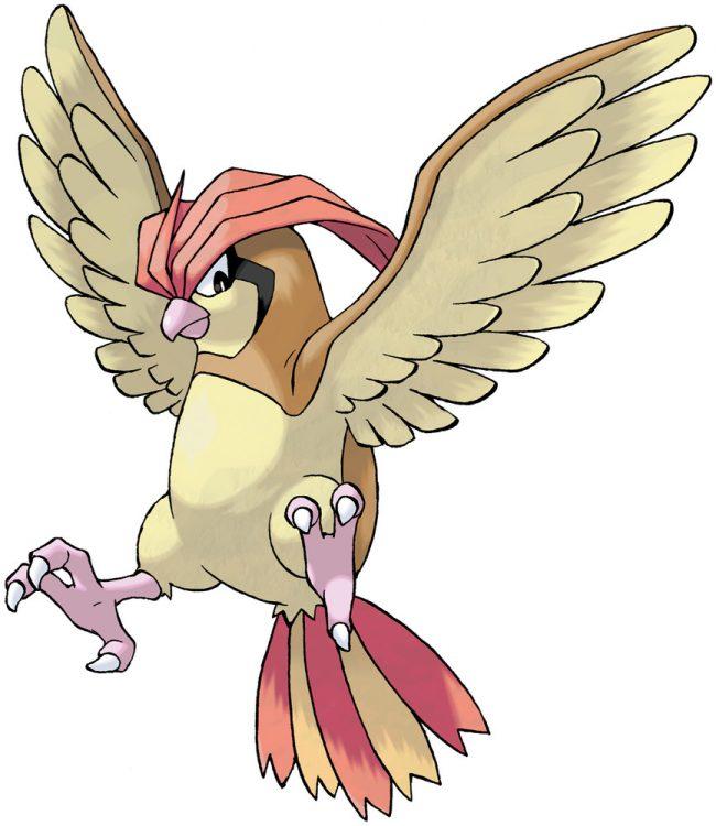 Pidgetto, one of the best Flying type Pokemon in Pokemon Let's Go